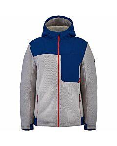 Spyder Alps FullZip Hoodie Jacket Men's- Alloy